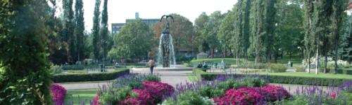 Kuvassa on Sibeliuksenpuiston kesäkukkia