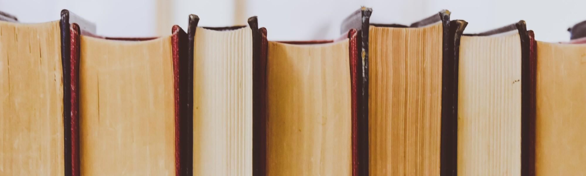 Kuvassa rivi kirjoja