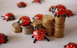 Kuvassa euroja ja leppäkerttuja