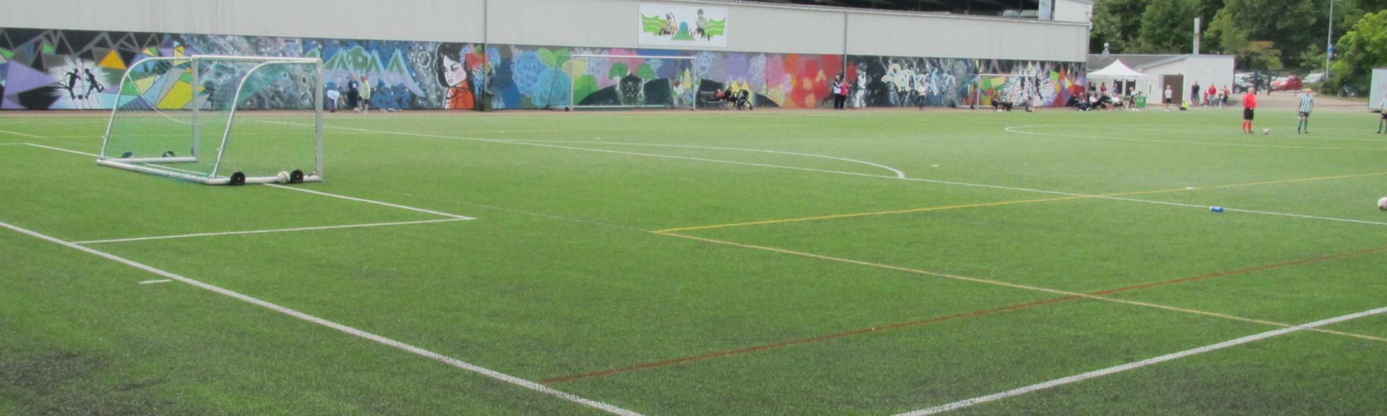 Kuvassa on Arto Tolsa -areenan lähiliikuntapaikka